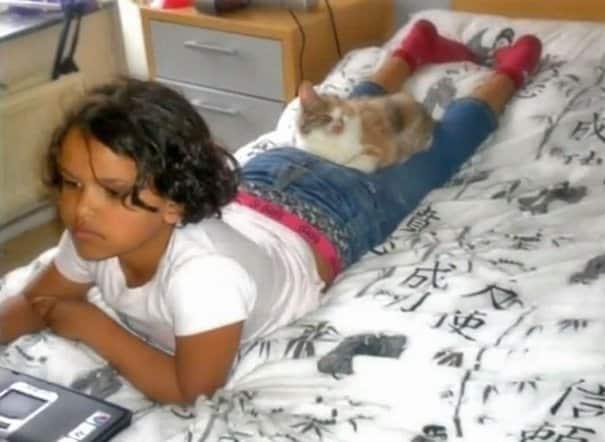 изродованый котёнок возле девочки